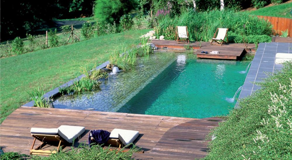 Piscine écologique : l\'intérêt d\'une baignade au naturel | Bio à la une
