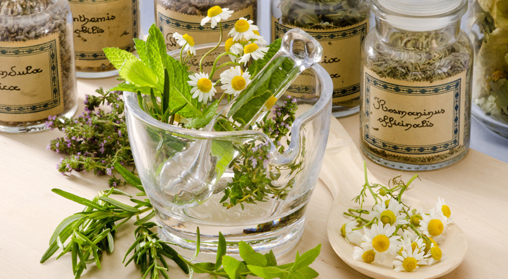 Coulisses d'un laboratoire en naturopathie