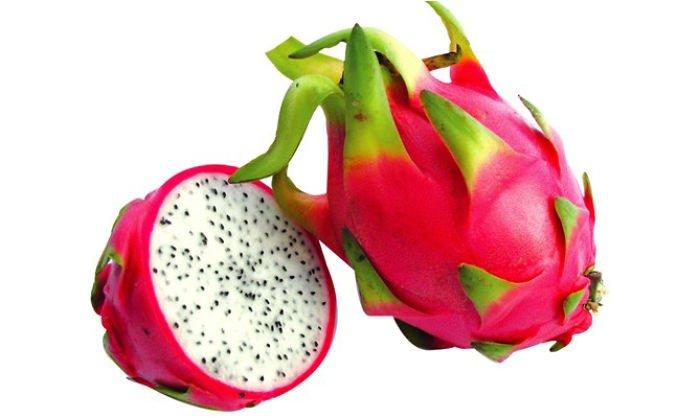 20 fruits surprenants dont vous n avez jamais entendu parler bio la une - Fruit qui pousse sur un palmier ...