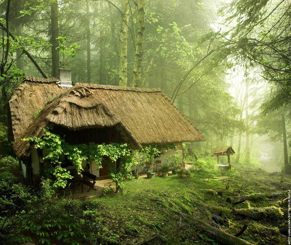 10 maisons magiques au coeur de la nature dans lesquelles - Maison en pleine nature ...