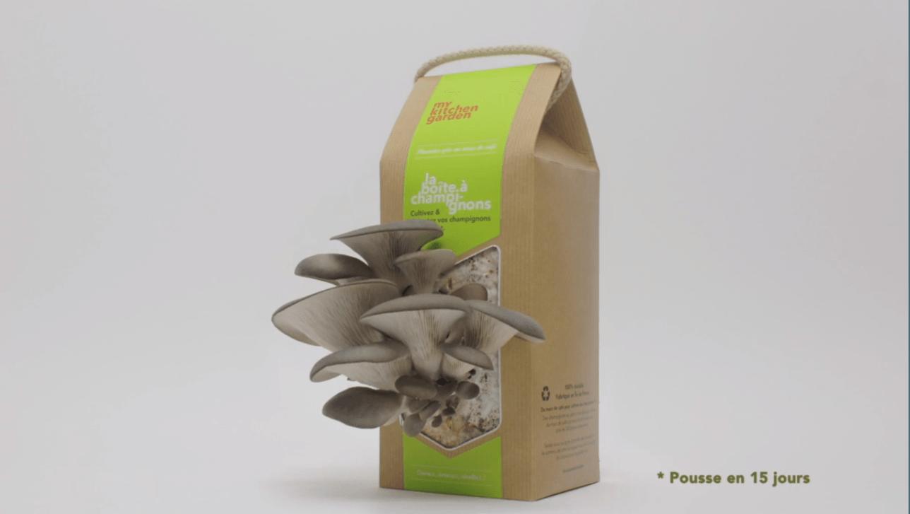 recycler le marc de caf pour faire pousser des champignons m me en ville bio la une. Black Bedroom Furniture Sets. Home Design Ideas