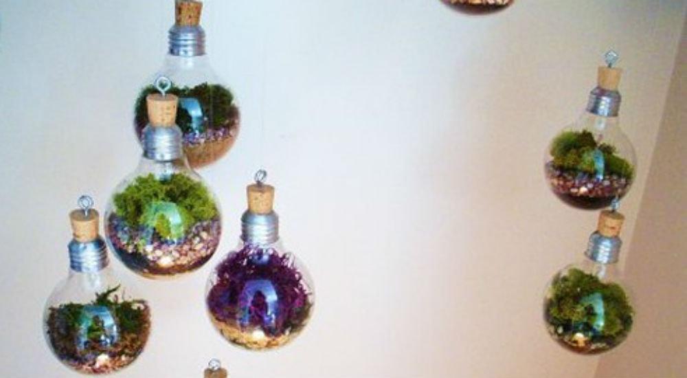 diy 5 id es cr atives pour un jardin d 39 int rieur bio la une. Black Bedroom Furniture Sets. Home Design Ideas