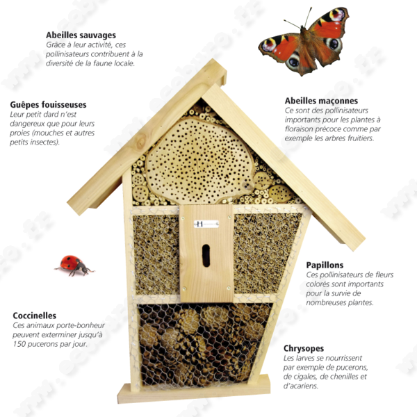 Jardinage bio pourquoi devriez vous absolument avoir un - Fabriquer une maison a insecte ...