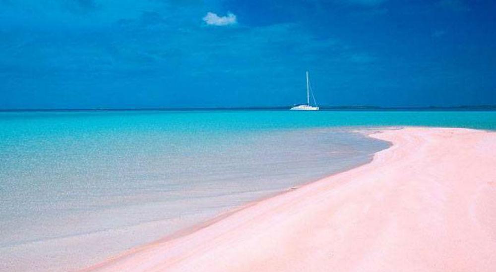 Top Les 10 plages les plus spectaculaires au monde | Bio à la une UV48