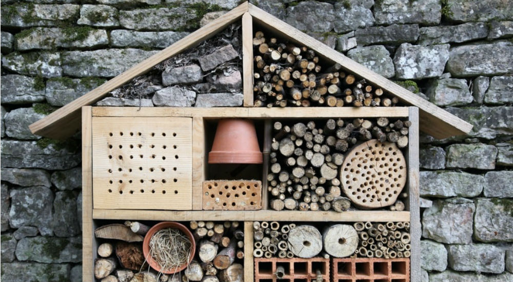 Jardinage bio pourquoi devriez vous absolument avoir un - Cabane a insectes ...