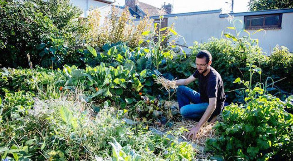 Permaculture urbaine il cultive et r colte 300 kg de for Amenager petit jardin 50m2