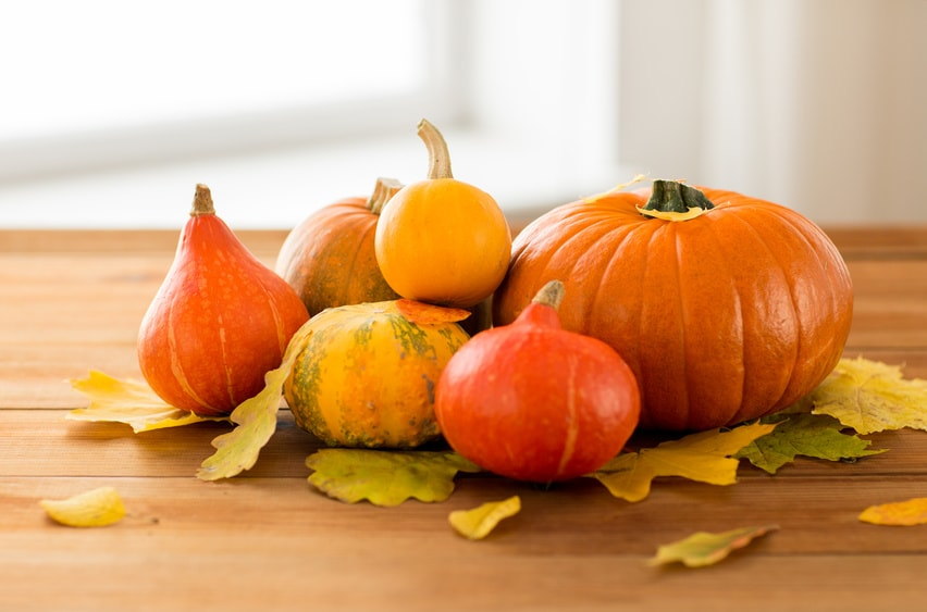 L gumes d 39 automne comment cuisiner les cucurbitac es - Comment cuisiner les girolles fraiches ...