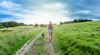 canicross, courir avec son chien
