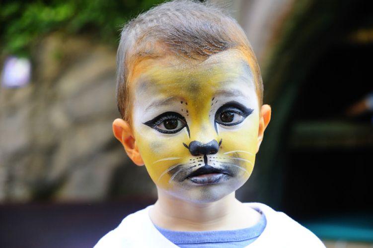 Petit garçon maquillé en félin