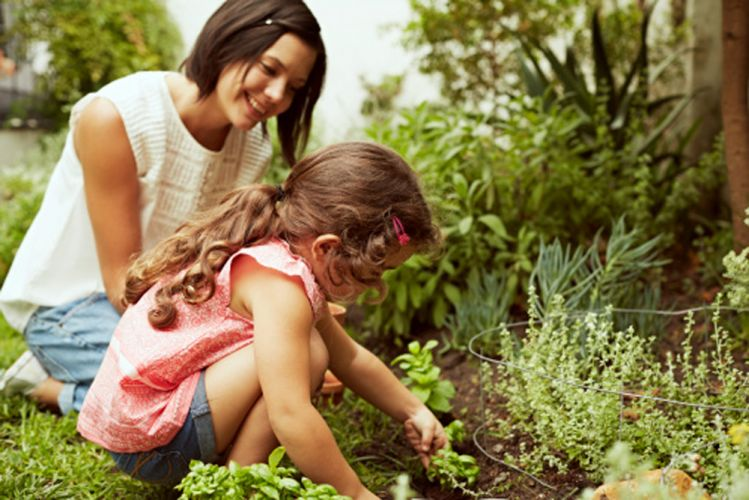 Une mère et sa fille plantent des graines dans un potager