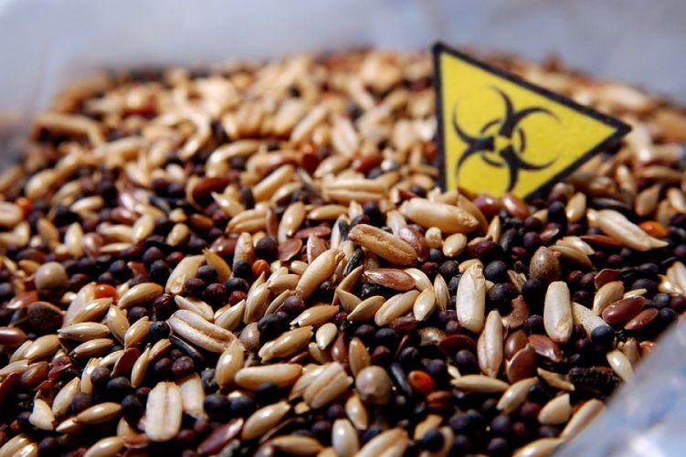 Mélange de céréales et étiquette portant le signe