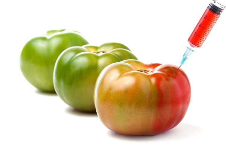 tomates et seringue contenant un liquide rouge