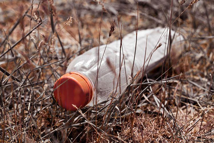 Bouteille en plastique vide jetée dans l'herbe