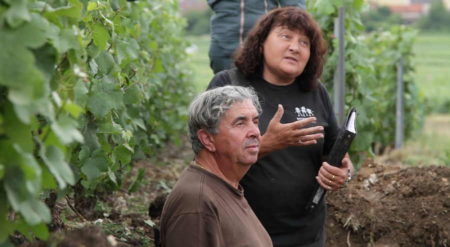 Claude et Lydia Bourguignon en pleine analyse de terre sur le terrain
