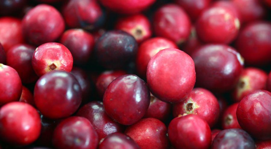 Panier de cranberries en gros plan