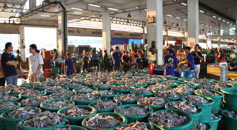 Etalage de pêche dans un marché