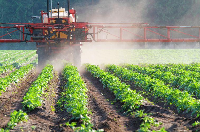 Épandage de pesticides dans les vignes