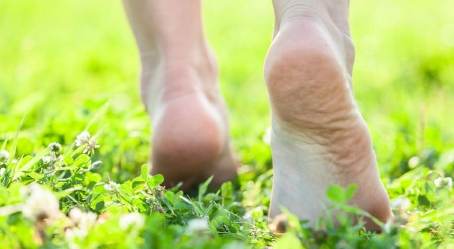 Pieds de femme dans l'herbe