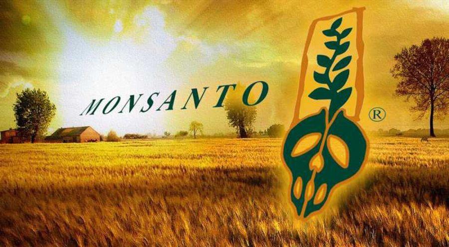 Logo de Monsanto dans un champ en couché de soleil