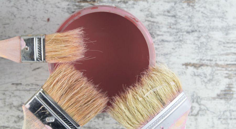 Comment Fabriquer SoiMme Sa Peinture cologique   Bio  La Une