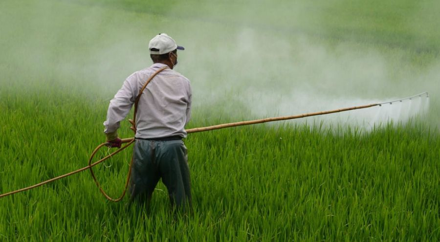 Un agriculteur arrose son champs de pesticides