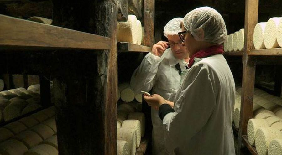 Deux employés d'une crèmerie analyse un fromage