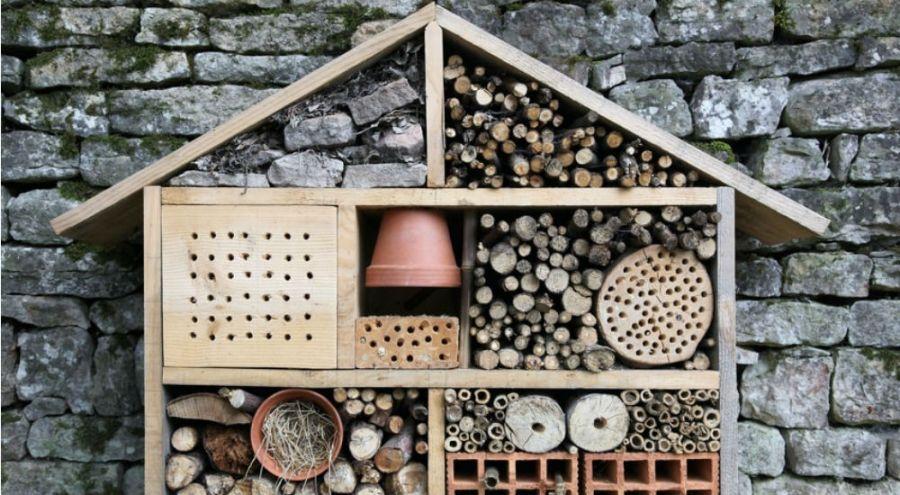 jardinage bio pourquoi devriez vous absolument avoir un. Black Bedroom Furniture Sets. Home Design Ideas