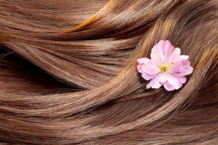 des cheveux bruns brillants avec une fleur rose
