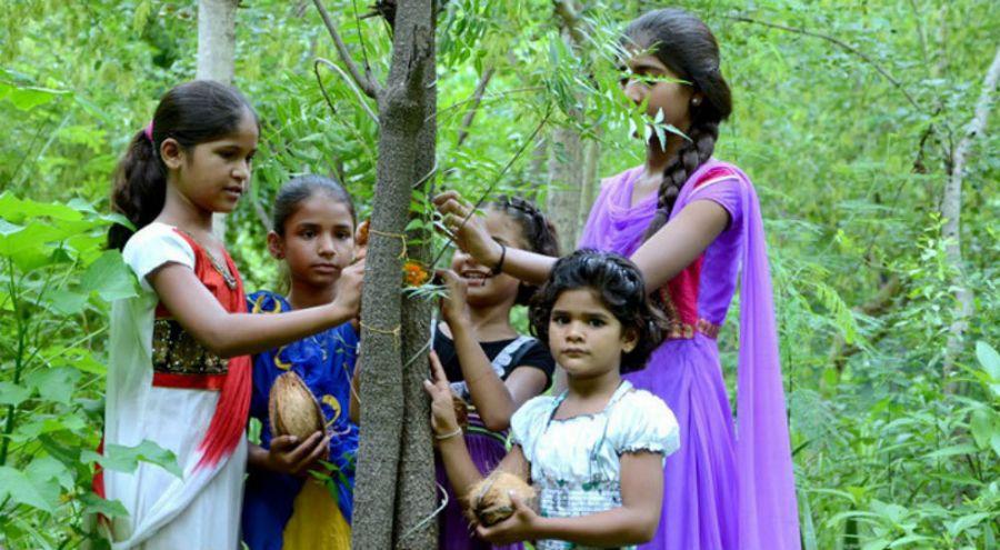 des indiennes plantent des arbres