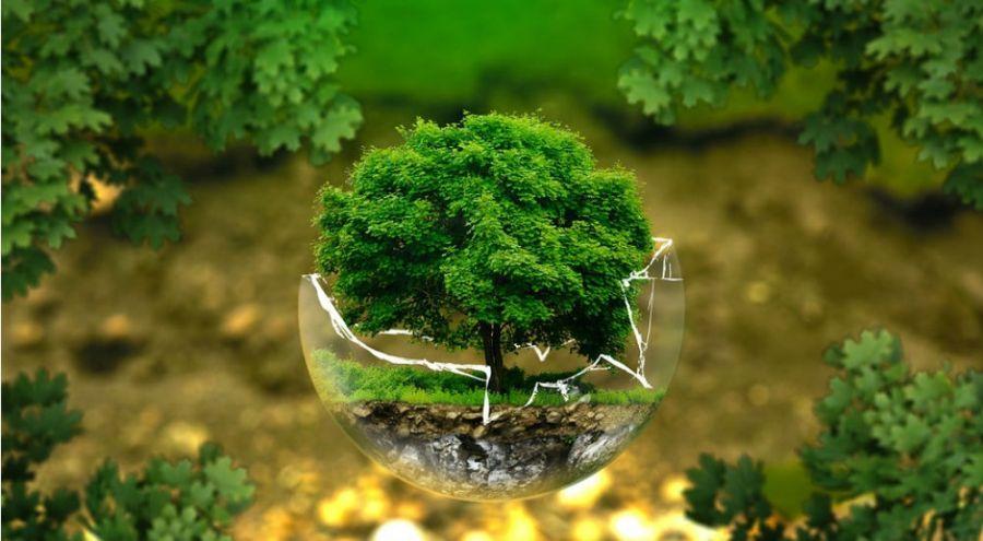 Ressources naturelles la planète vit désormais à crédit