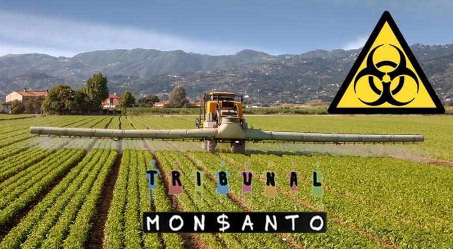 Tribunal de Monsanto: l'accusé prépare sournoisement sa défense