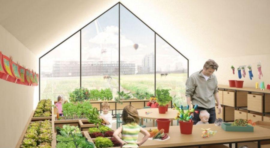 une école va apprendre à ses élèves faire pousser ses propres légumes