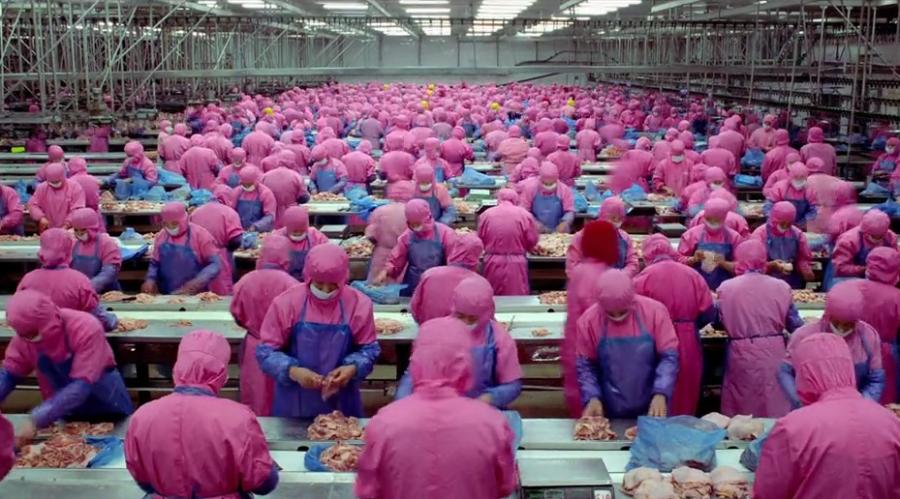 Photo intérieur d'une gigantesque usine d'abattage