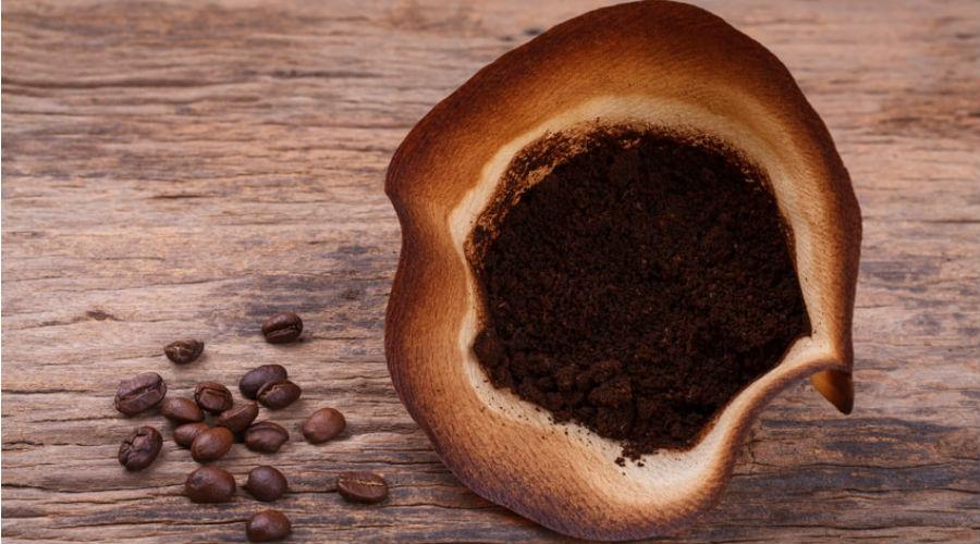 Le marc de caf l or brun b n fique au potager bio la une - Utilisation du marc de cafe au jardin ...