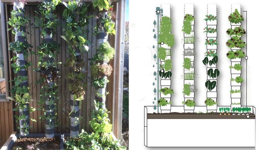 Récolter 100kg de légumes par an sur 1m2, c'est la promesse de cette start-up
