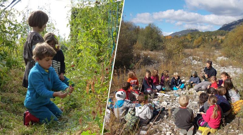 des enfants apprenent la nature à l'école
