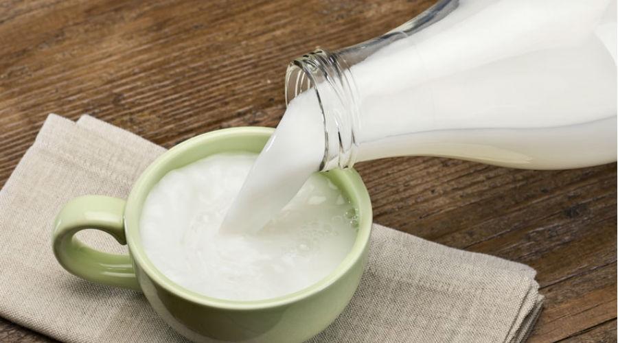 Contre l'exploitation animale, ils inventent le lait de vache fabriqué sans vache