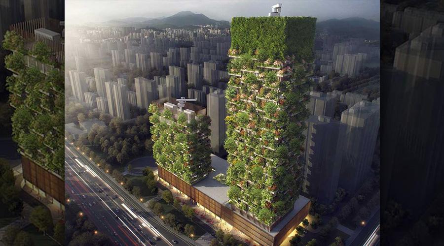 Immeuble forêt en construction en Chine