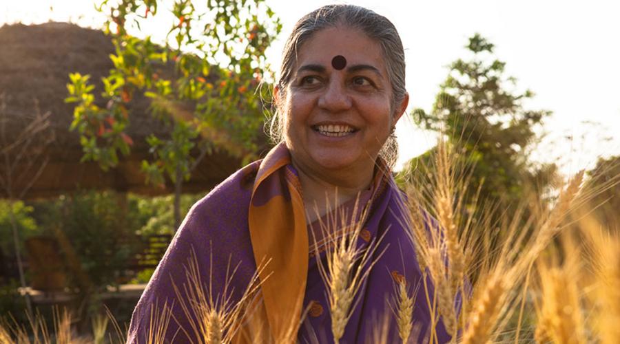 """Vandana Shiva : """"Les OGM détruisent la Terre"""""""