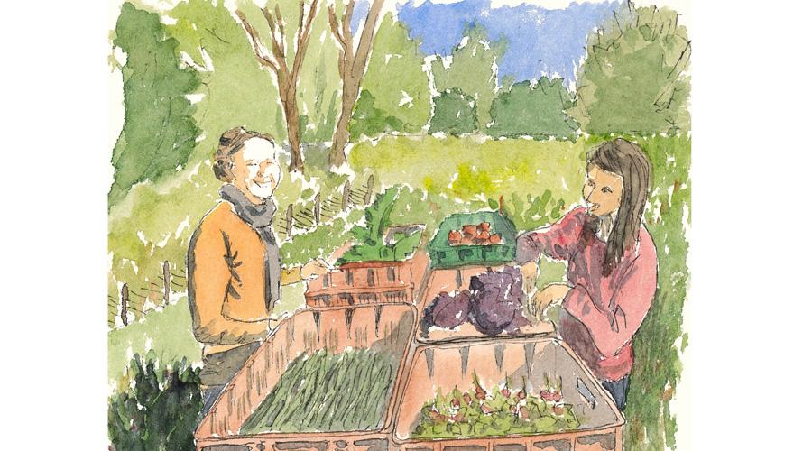 Illustration d'un néo-paysan dans son champ