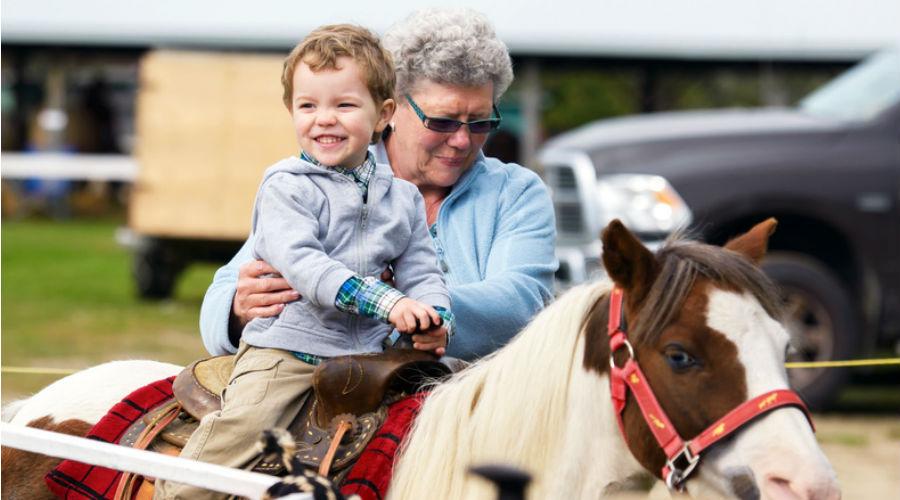 Les manèges à poney bientôt interdits en région bruxelloise