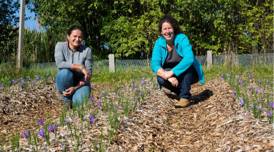 Ces femmes ont tout quitté leur vie pour lancer leur micro-ferme en Normandie