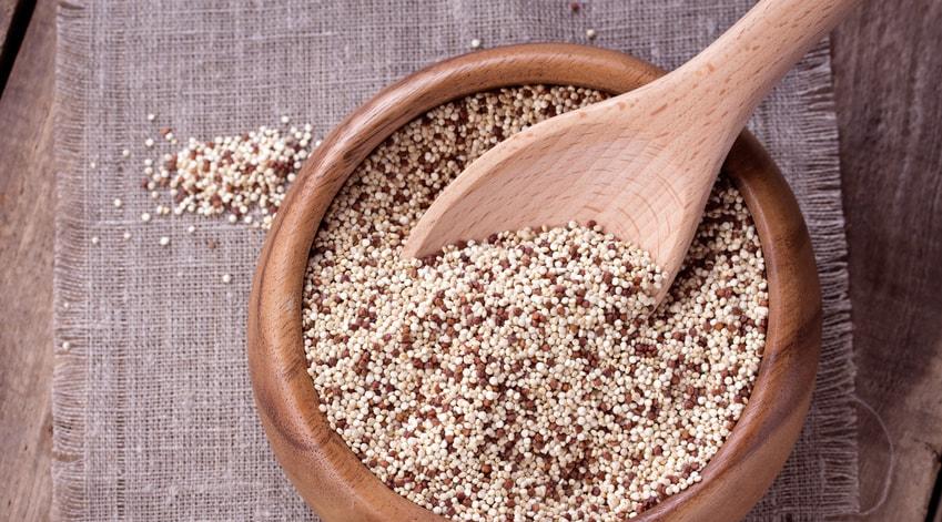 Le Quinoa, une graine qui fait des envieux