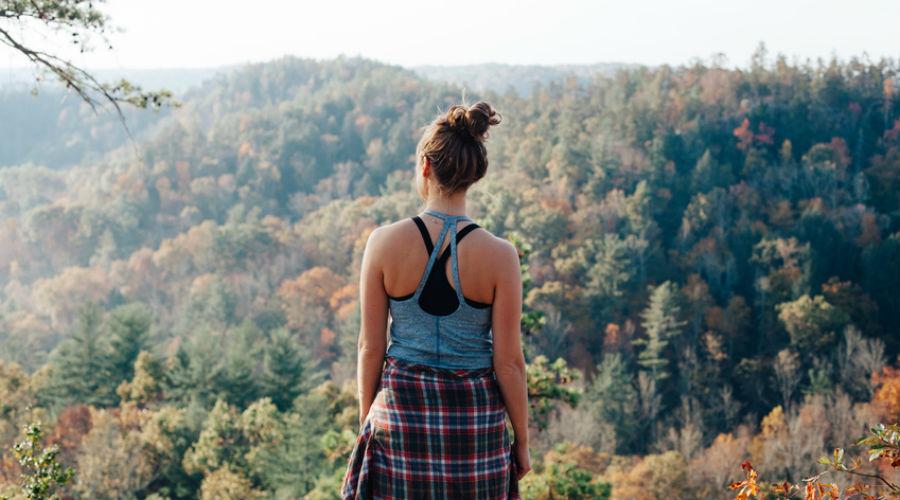 Shinrin-yoku :  le bain de forêt comme thérapie anti-stress