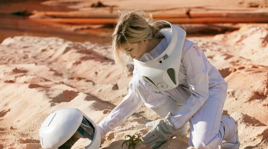 jardinage plante dans l'espace