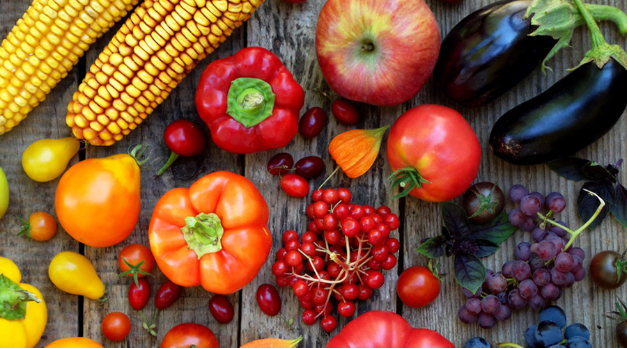 Salon SIAL : l'avenir de l'alimentation sera plus végétal