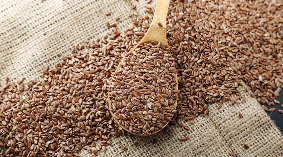 Les semences