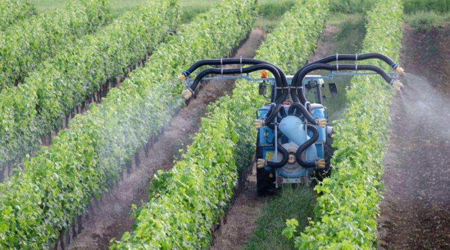 Agriculture bio : l'UE prolonge l'autorisation du cuivre malgré les risques
