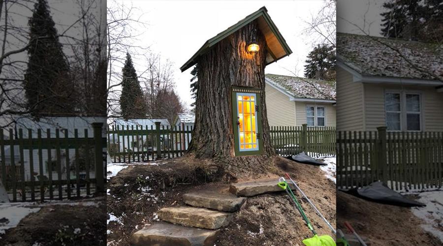 Cet arbre mort est transformé en magnifique bibliothèque gratuite