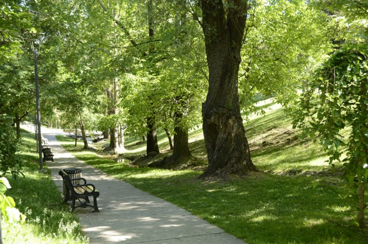 Les espaces verts facteur de bien tre pour les urbains for Les espaces verts urbains